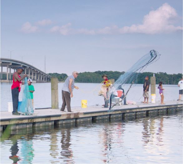 Group of People Using Nets off of a Dock